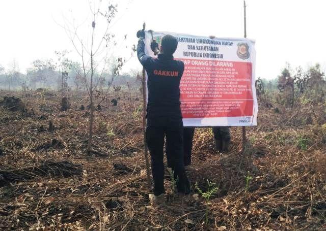 KLHK Segel 3 Lokasi Lahan Hutan Terbakar 200 Ha