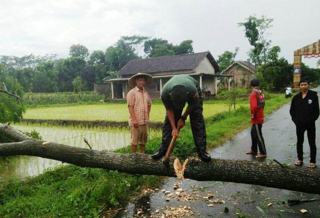 Warga Krenceng Kediri Meninggal Akibat Angin Puting Beliung