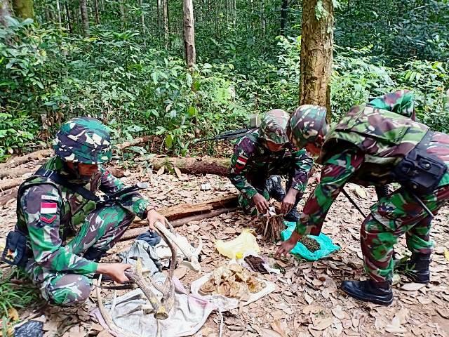 Satgas Pamtas Papua Temukan Ganja & Tanduk Rusa